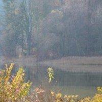 Bücher - ein Segen bei trübem Herbstwetter