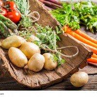 Vegan essen in Bad Tölz